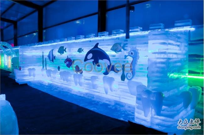 壁纸 海底 海底世界 海洋馆 水族馆 650_431