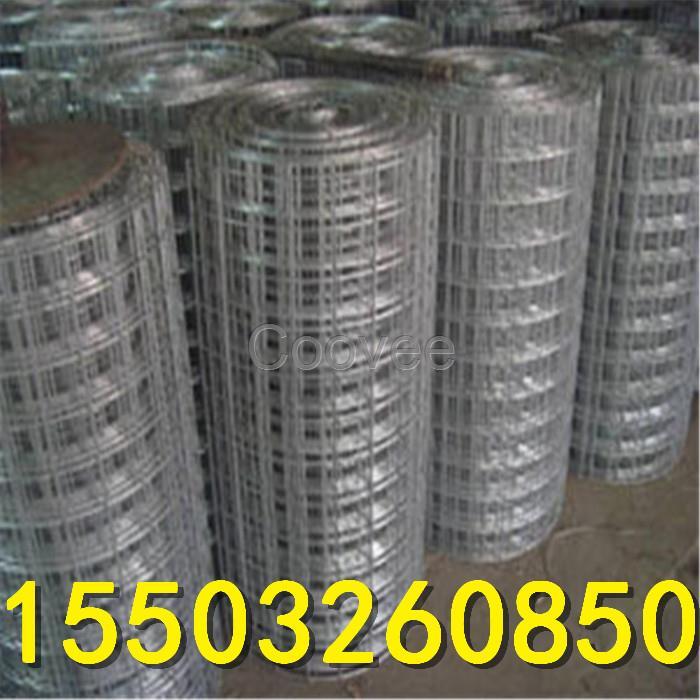 河北耀东pvc电焊网