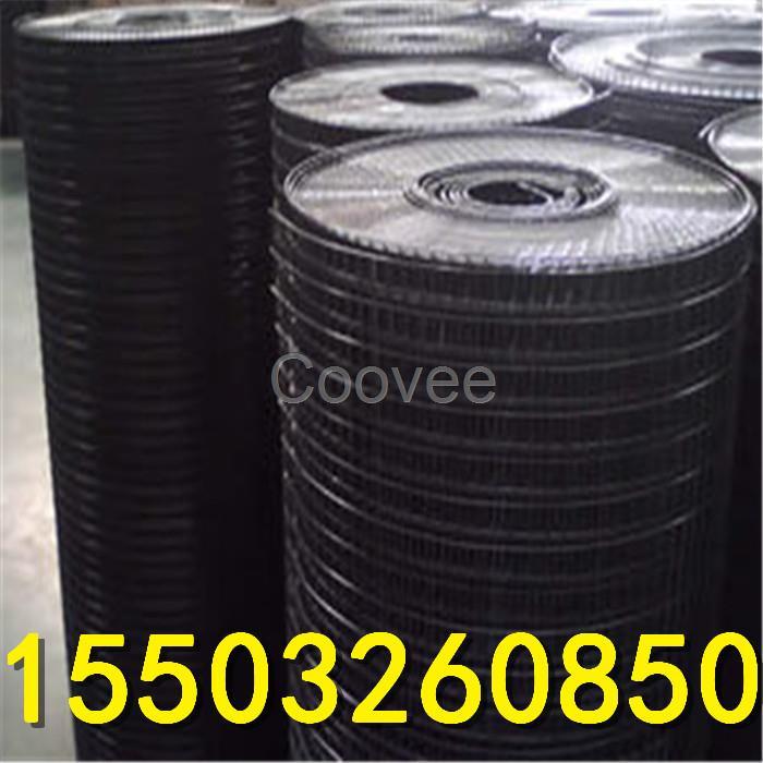 河北耀东pvc电焊网批发