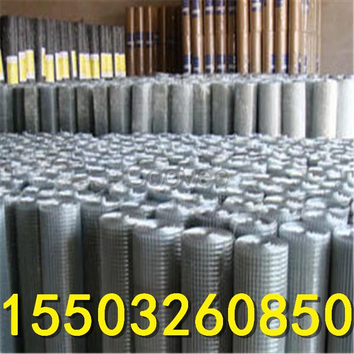 河北耀东绿色电焊网生产商