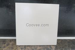 中冠耐酸瓷板