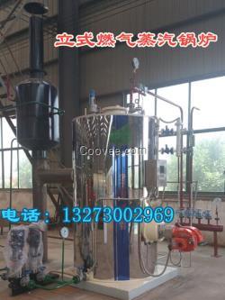 立式0.5吨(半吨)天燃气蒸汽锅炉价格