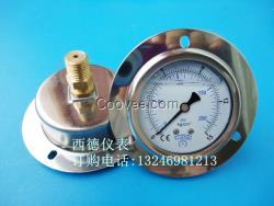 60MM轴向带边15KG充油防震压力表