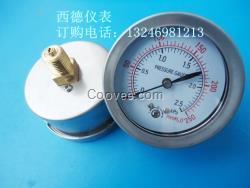 60MM轴向2.5KPA压力表,气压表