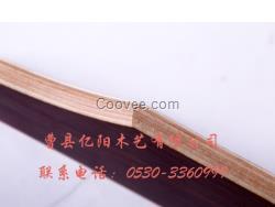 求购床板条批发市场  山东桦木木条价格