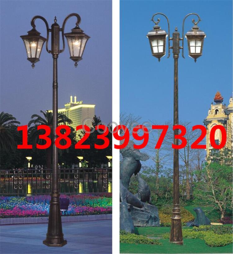 双头庭院灯3米4米景观灯定制风景区草坪灯节能led特色