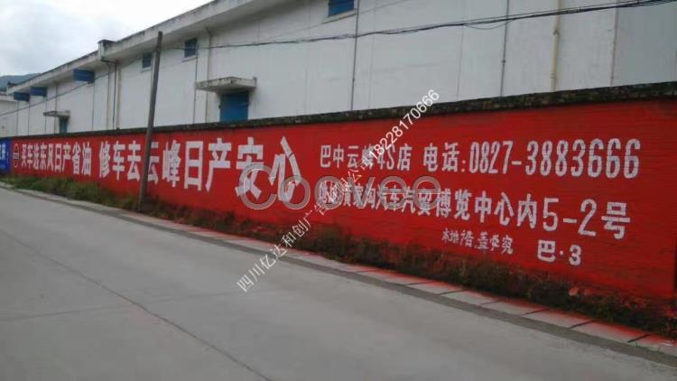 商业服务 广告设计其他商业服务 广告服务 广告制作 芦山县民墙广告