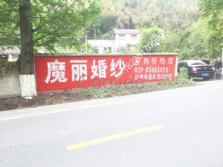 商业服务 广告设计其他商业服务 广告服务 广告发布 宝兴县民墙广告