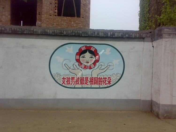 商业服务 广告设计其他商业服务 广告服务 广告发布 通江县民墙广告